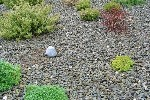 Decorative Gravel